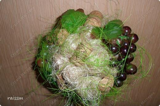 Виноградное  дерево. фото 2