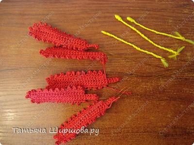 Мастер-класс Вязание Вязание крючком ЦВЕТЫ ЛИЛИИ Нитки фото 13