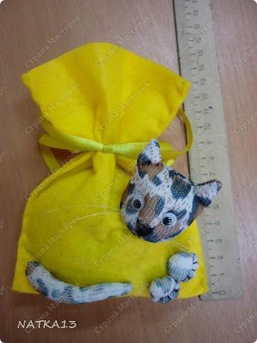 """давно нашла МК Lidia Kalambet по изготовлению сувенира """"кот в мешке""""....и вот я его сделала.на день рождения сестре,а в мешке мыло душистое и денежка фото 2"""