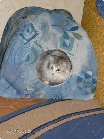 сшила для своего кота домик)))))кот доволен фото 2