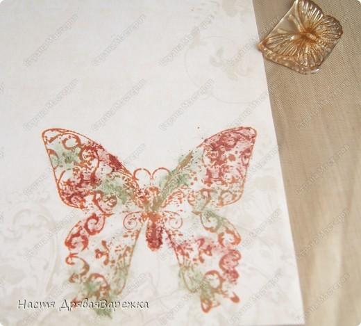 Бабочка-красавица фото 3