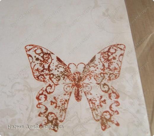 Бабочка-красавица фото 4