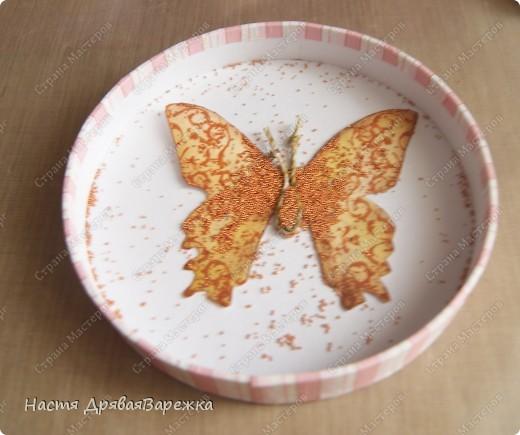 Бабочка-красавица фото 10