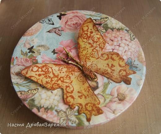 Бабочка-красавица фото 11