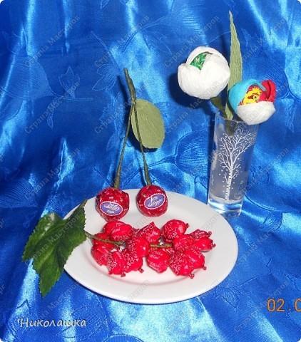 Вот нарисовались еще такие маленькие пустячки у меня из конфеток: смородина, вишенки, и цветочки. Но цветочки уже не мои, а дочерей, делали в подарок учительнице на 8 марта. Белый делала Анюта, ей 13 лет, а поменьше, напоминающий флаг России, сделан из чупа-чупсика Машенькой 6-ти лет. фото 1