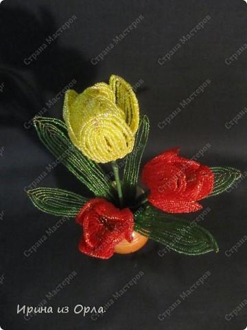 Для своей любимой мамочки торопилась сплести букет тюльпанов. УСПЕЛА! Она была в восторге от такого подарка!  фото 2