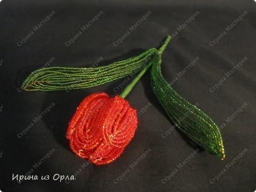 Для своей любимой мамочки торопилась сплести букет тюльпанов. УСПЕЛА! Она была в восторге от такого подарка!  фото 5