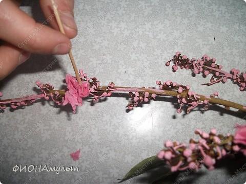 Такую веточку сакуры можно сделать с совсем маленькими детьми.  1.Ветка лавра(купила на рынке)овобождается об листиков. фото 7