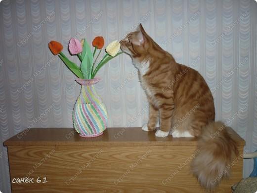 Весной запахло. фото 1