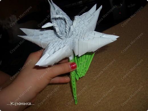 Это готовая лилия. Она получается нежная и красивая. фото 1