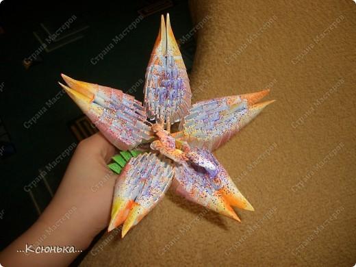 Это готовая лилия. Она получается нежная и красивая. фото 19