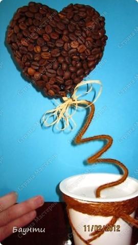 Мои кофейные сердца.Кофе в горшочки не насыпала,т.к деревцам предстояла поездка в другой город. фото 2