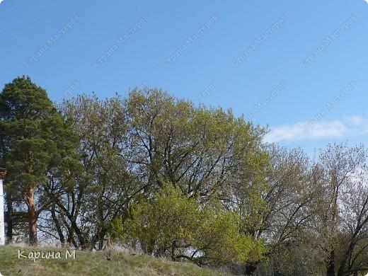 На конец то настал мой самый любимый месяц в году - МАЙ))) Предлагаю прогуляться и насладится природой пробуждающейся после долгого зимнего сна.... фото 16