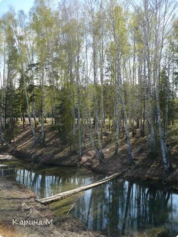 На конец то настал мой самый любимый месяц в году - МАЙ))) Предлагаю прогуляться и насладится природой пробуждающейся после долгого зимнего сна.... фото 20