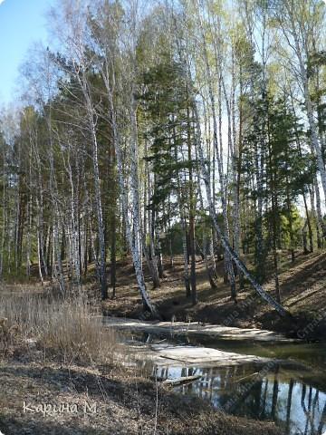 На конец то настал мой самый любимый месяц в году - МАЙ))) Предлагаю прогуляться и насладится природой пробуждающейся после долгого зимнего сна.... фото 21
