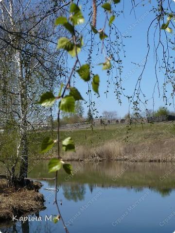 На конец то настал мой самый любимый месяц в году - МАЙ))) Предлагаю прогуляться и насладится природой пробуждающейся после долгого зимнего сна.... фото 37
