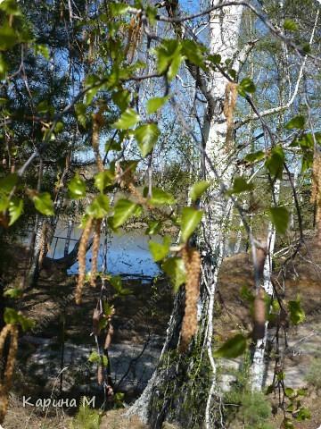 На конец то настал мой самый любимый месяц в году - МАЙ))) Предлагаю прогуляться и насладится природой пробуждающейся после долгого зимнего сна.... фото 55