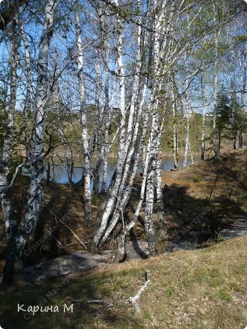 На конец то настал мой самый любимый месяц в году - МАЙ))) Предлагаю прогуляться и насладится природой пробуждающейся после долгого зимнего сна.... фото 56