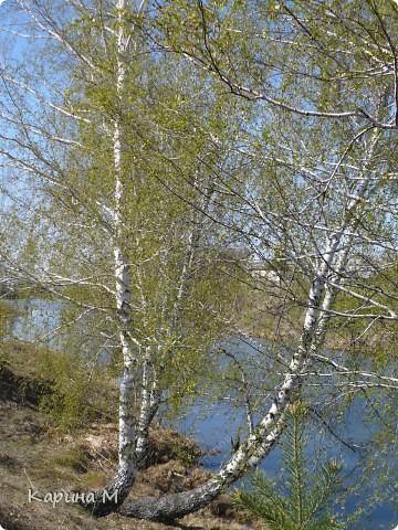 На конец то настал мой самый любимый месяц в году - МАЙ))) Предлагаю прогуляться и насладится природой пробуждающейся после долгого зимнего сна.... фото 57