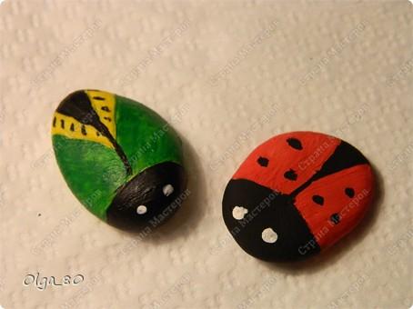 Из жизни насекомых... + сравнение красок фото 3