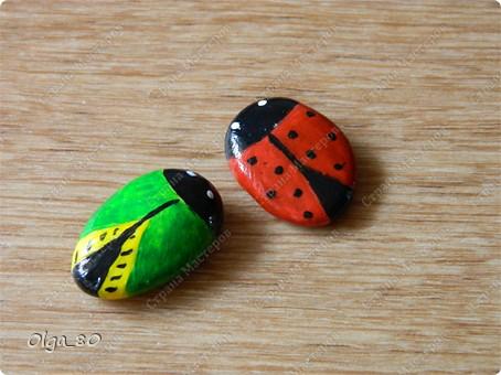 Из жизни насекомых... + сравнение красок фото 4
