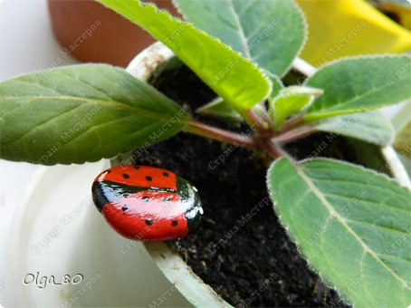 Из жизни насекомых... + сравнение красок фото 8