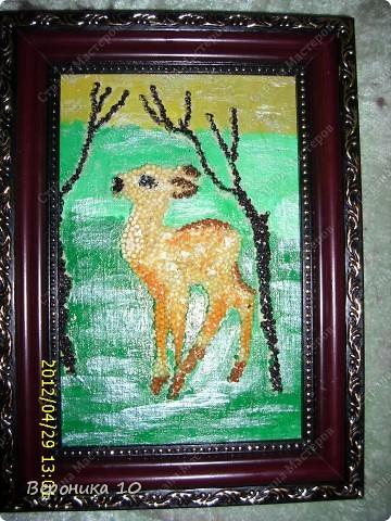 Вот такую картину я сделала из пшена и чая. Спасибо Ирине Рублевой! Училась по ее МК. Раскрасила и покрыла лаком.
