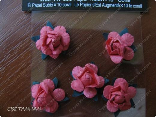 Вдохновила меня  http://asti-n.ya.ru/ но дырокол у меня не 3,5 см , а 1,5см  (только, что закончила сохнут))) фото 6