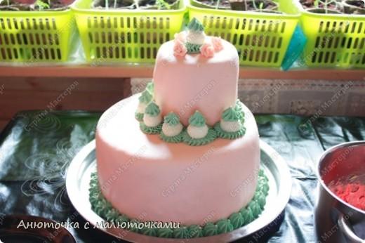 Сделала на очередной день рождения дочери очередной тортик :) Ничего особенного, на самом деле.   фото 8