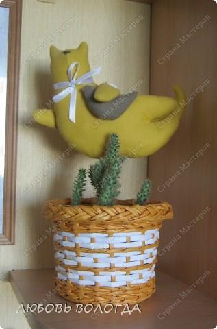 Вот такой кашпенок для кактусят быстренько случился. Котик это подарок подруги, http://stranamasterov.ru/user/38080, Я соорудила только кашпенка))) фото 1