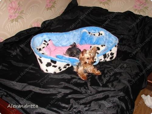 Когда-то решила сшить собаке лежанку...подумала и решила в виде косточки.. фото 3