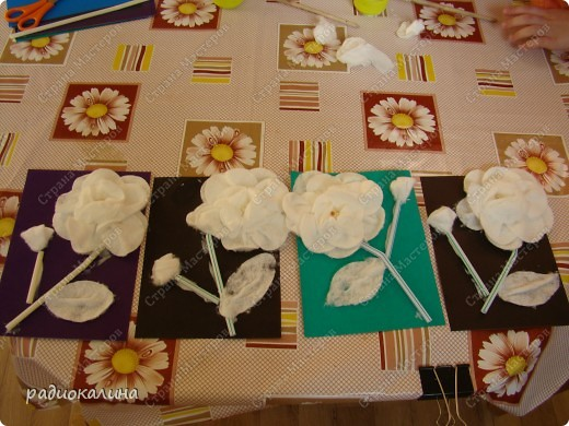 Из ватных дисков ребята сделали белую розу чтобы порадовать наших мам и бабушек, которые сидят и терпеливо ждут своих чад с занятий. Для лепестков мы разделяли диск на 2 половинки и первый слой клеили из 5 лепестков, делая замин в серединке цветка. фото 1