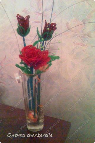 Розы в подарок фото 1