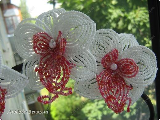 Бисероплетение - Орхидеи-5 из бисера.