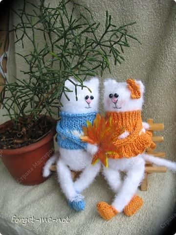 НЕмартовские котики фото 4