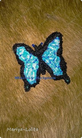 "Брошь ""Giant Swallowtail"""