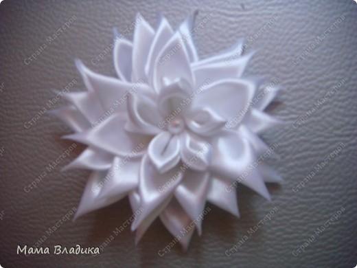 Канзаши по МК: http://stranamasterov.ru/node/293827?c=favorite_b  Спасибо, frau_Helena фото 1