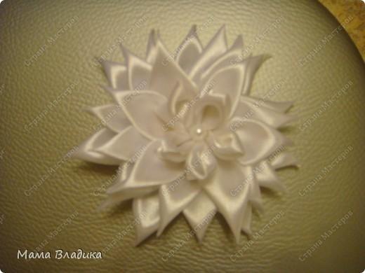 Канзаши по МК: http://stranamasterov.ru/node/293827?c=favorite_b  Спасибо, frau_Helena фото 2