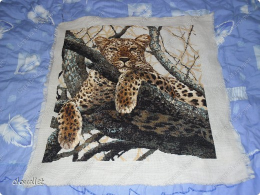 схема вышивки леопард риолис