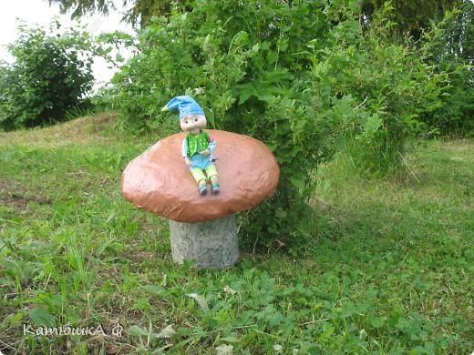 Северяне очень любят полакомится белыми грибочками, вот и у нас под кустом вырос вкусный и крепкий. Да и не один, а со смотрителем и защитником- маленьким гномиком фото 2