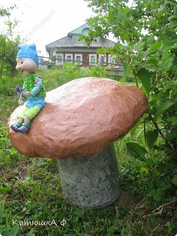 Северяне очень любят полакомится белыми грибочками, вот и у нас под кустом вырос вкусный и крепкий. Да и не один, а со смотрителем и защитником- маленьким гномиком фото 5