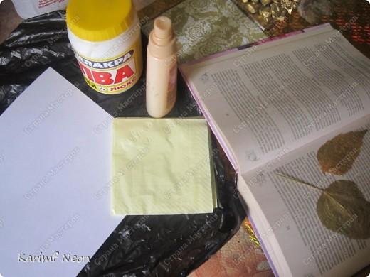 Это тоже для празднования Юбилея моей подруги. Расскажу о бумаге ручной работы и дам НЕСКОЛЬКО Волшебных РЕЦЕПТОВ. фото 2