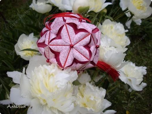 Новые Floral Globe часть 1 фото 3
