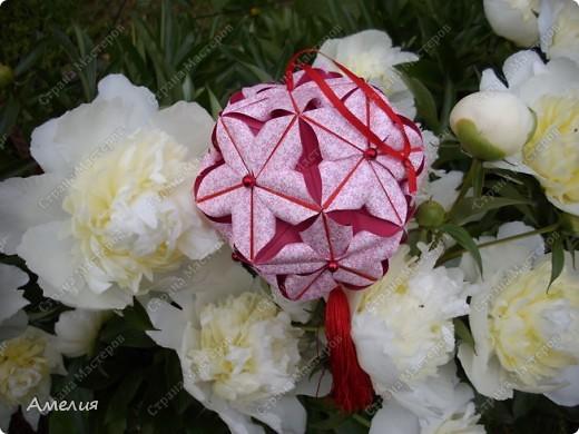 Новые Floral Globe часть 1 фото 4