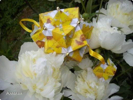 Новые Floral Globe часть 1 фото 6