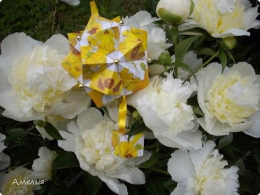 Новые Floral Globe часть 1 фото 7