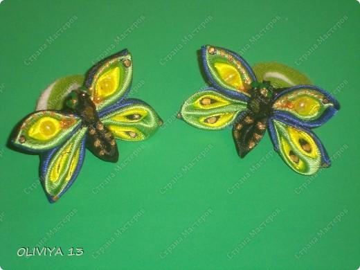Букашки на резиночках ,идеи из нета .Бабочки  фото 1