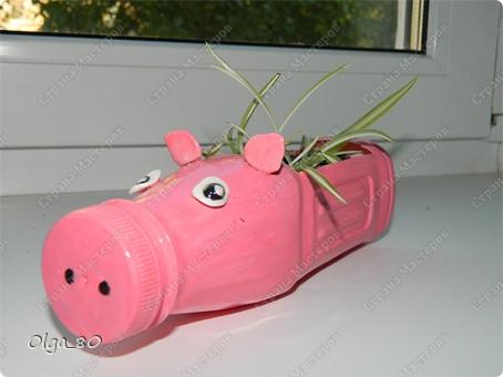 Идея взята у Тани Славной http://stranamasterov.ru/node/345784. Только она больших свиней вырастила. А у меня пока поросята. Пластиковые бутылки окрашены акриловыми красками. Глазки и уши из самозастывающей пластики, приклеены пистолетом. Потом все покрыто лаком. фото 6