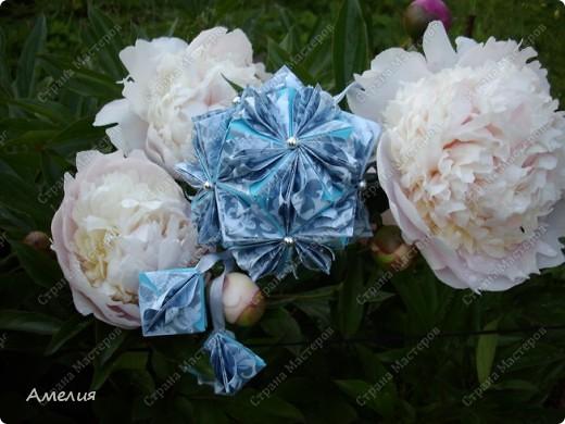 Новые Floral Globe часть 2 фото 3