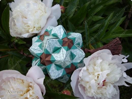 Новые Floral Globe часть 2 фото 10